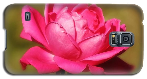 September Rose Up Close Galaxy S5 Case