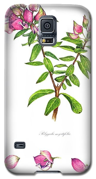 Galaxy S5 Case featuring the painting Septemberbossie  Polygala Myrtifolia by Heidi Kriel