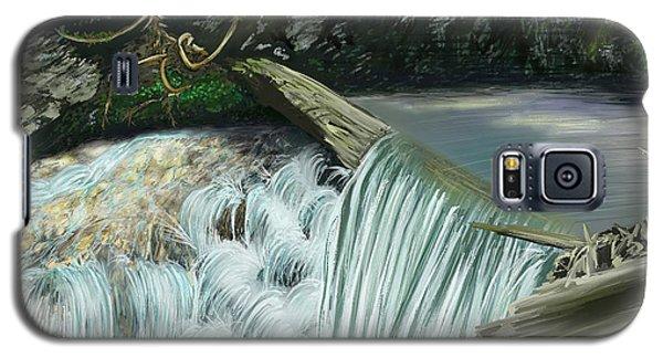 Serene Oasis Of Stagger Inn Galaxy S5 Case