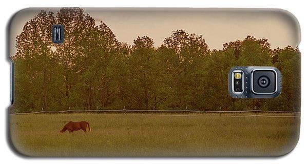 Serene Pasture Galaxy S5 Case by Jean Haynes