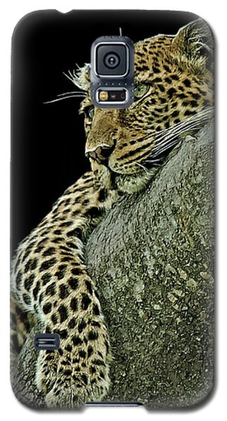 Serengeti Leopard 2a Galaxy S5 Case