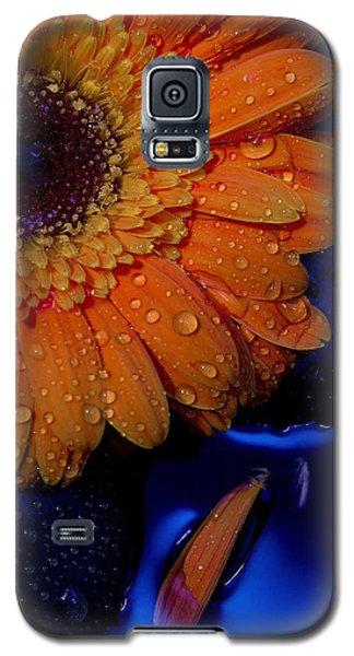 Serenity Galaxy S5 Case by Amber Kresge