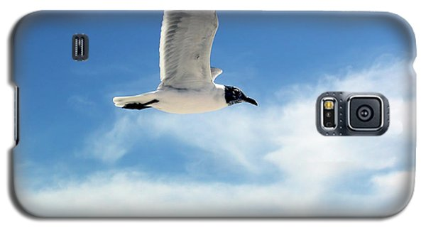Galaxy S5 Case featuring the photograph Serenity Seagull by Marie Hicks