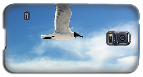 Serenity Seagull Galaxy S5 Case by Marie Hicks