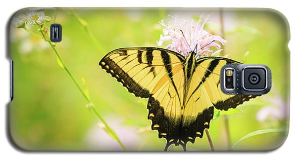 Series Of Yellow Swallowtail #6 Of 6 Galaxy S5 Case