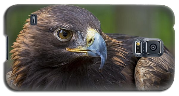Galaxy S5 Case featuring the photograph Serious by Andrea Silies