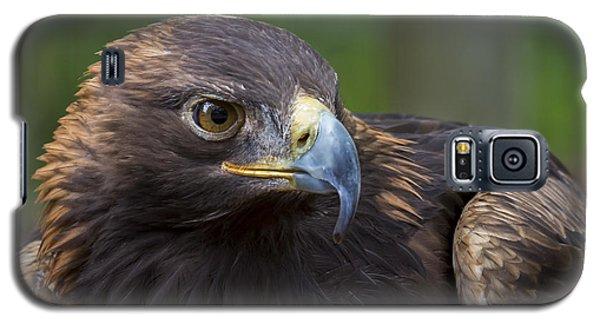 Serious Galaxy S5 Case