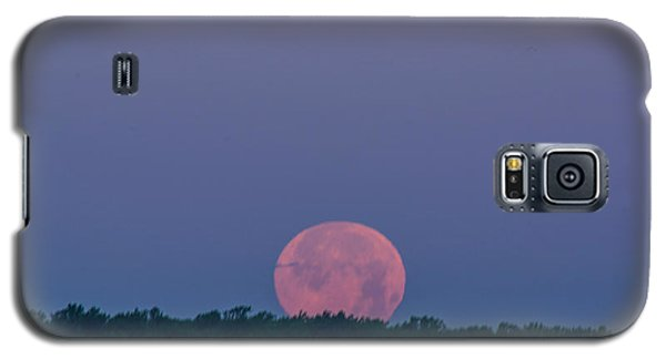 Setting Strawberry Moon Galaxy S5 Case