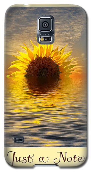 Galaxy S5 Case featuring the photograph Setting Sun-flower Note Card by Geraldine Alexander