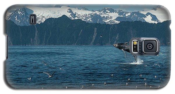 Seward Whale Breach Galaxy S5 Case