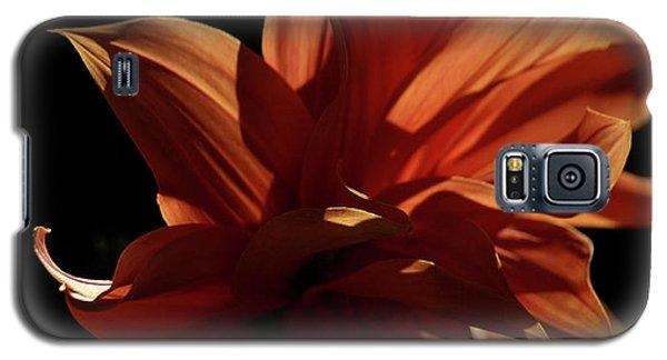 Sfgarden01 Galaxy S5 Case