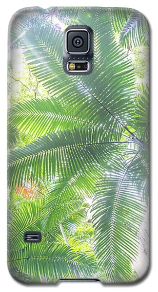 Shade Of Eden  Galaxy S5 Case