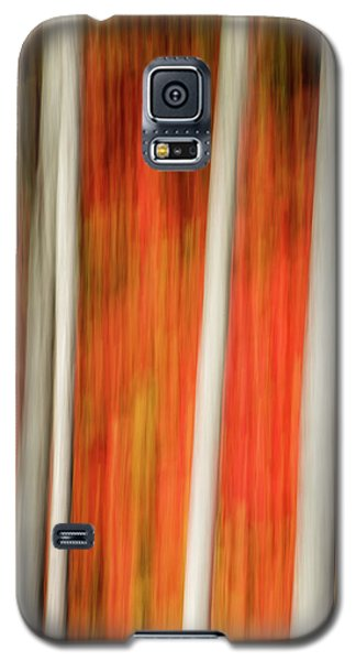 Galaxy S5 Case featuring the photograph Shades Of Amber And Marmalade  by Dustin LeFevre