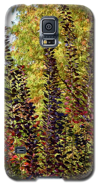 Galaxy S5 Case featuring the photograph Shades Of Fall by Deborah  Crew-Johnson