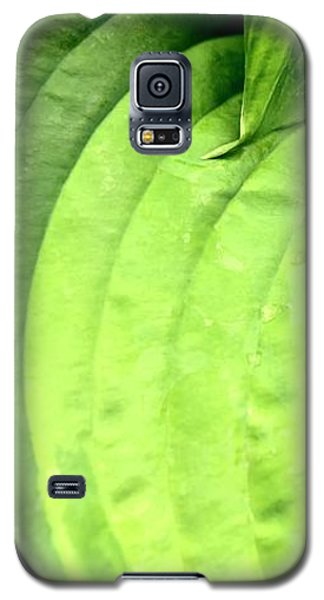 Shades Of Green Galaxy S5 Case