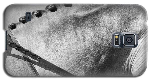 Shades Of Grey Fine Art Horse Photography Galaxy S5 Case