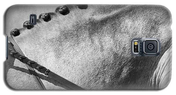 Shades Of Grey Fine Art Horse Photography Galaxy S5 Case