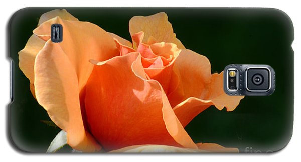 Shades Of The Sun Galaxy S5 Case