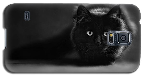 Shadow Cat 2 Galaxy S5 Case