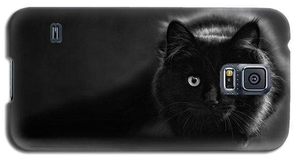 Shadow Cat 2 Galaxy S5 Case