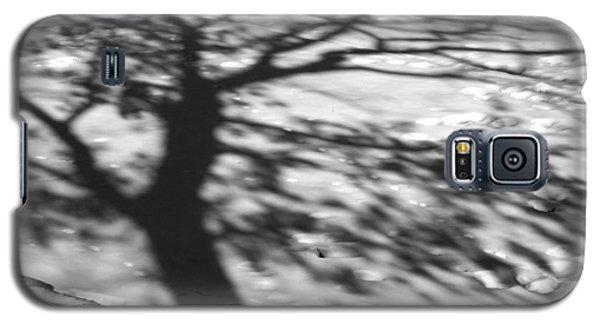 Shadow Tree  Herrick Lake  Naperville Illinois Galaxy S5 Case