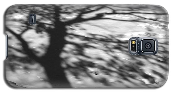 Shadow Tree  Herrick Lake  Naperville Illinois Galaxy S5 Case