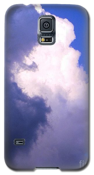 Shadow Work Galaxy S5 Case by Melissa Stoudt
