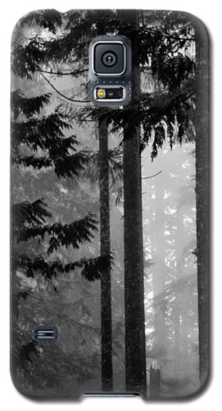 Shadows  Galaxy S5 Case by Connie Handscomb
