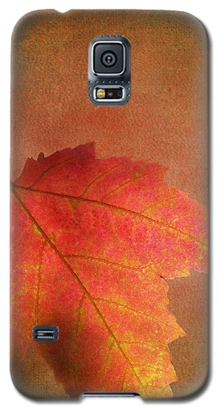 Shadows Over Maple Leaf Galaxy S5 Case