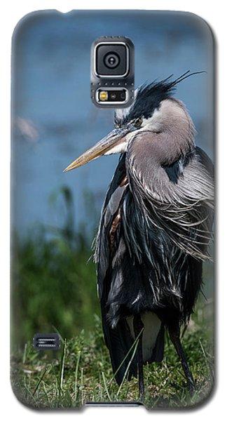 Shaggy Mane Galaxy S5 Case