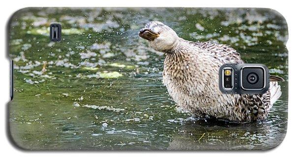 Shake It Off Galaxy S5 Case