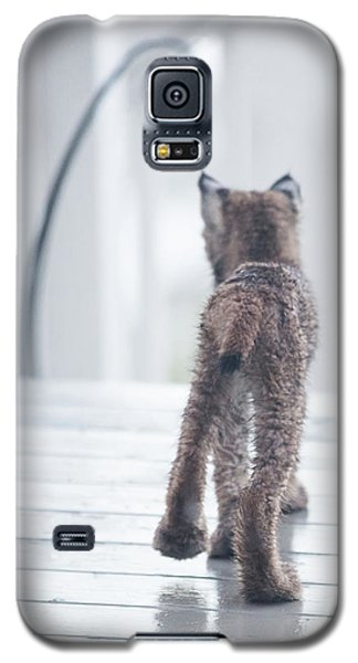 Shake It Off Galaxy S5 Case