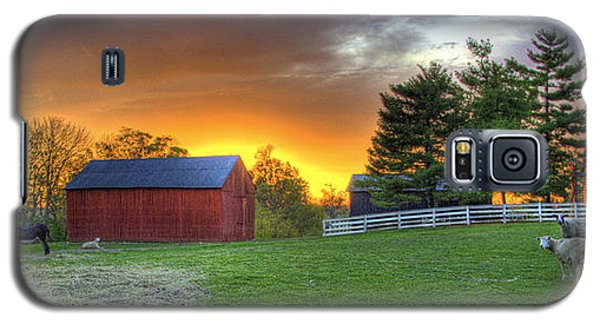 Shaker Animals At Sunset Galaxy S5 Case