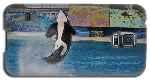 Shamu Splash Galaxy S5 Case
