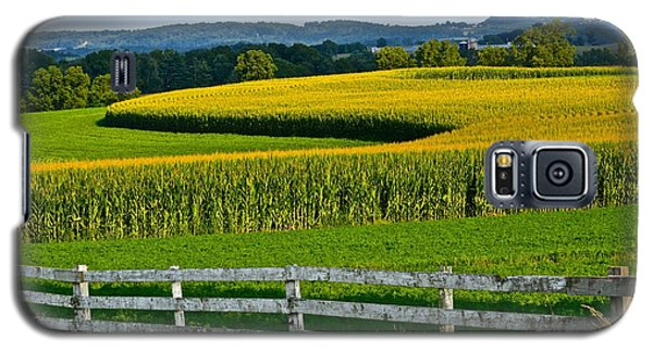 Shapely Cornfield 1 Galaxy S5 Case