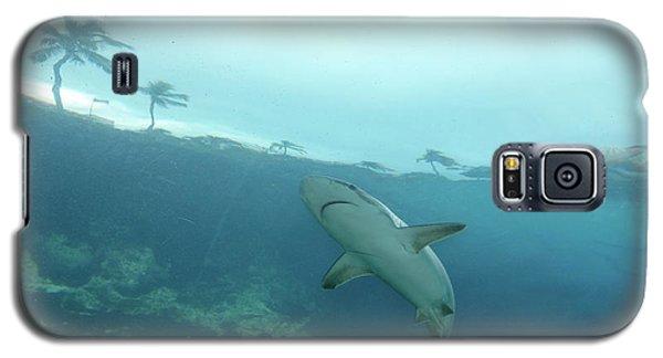 Galaxy S5 Case featuring the photograph Shark Attack by Wilko Van de Kamp