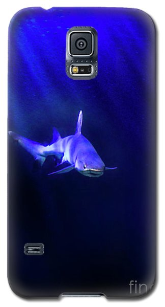 Galaxy S5 Case featuring the photograph Shark by Jill Battaglia