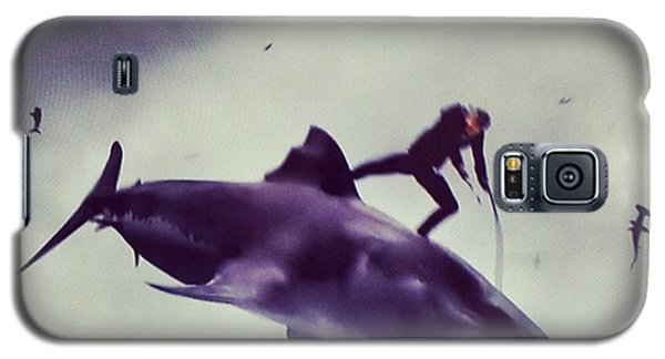 Movie Galaxy S5 Case - #sharknado #sharknado2 #bmovie #movie by Abdurrahman Ozlem