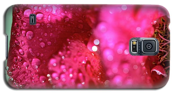 Sharp Wet Rose Galaxy S5 Case