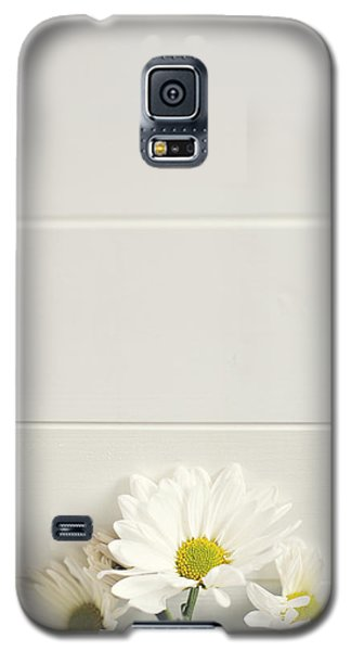 Shasta Daisies Cropped 1 Galaxy S5 Case