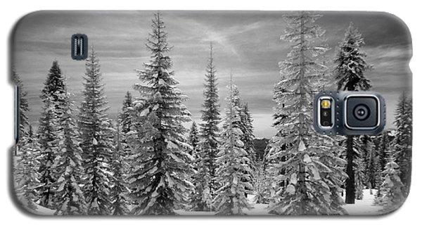 Shasta Snowtrees Galaxy S5 Case