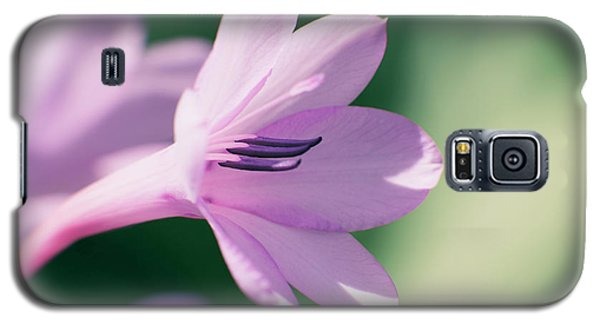 Galaxy S5 Case featuring the photograph She Listens Like Spring by Linda Lees