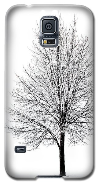 Galaxy S5 Case featuring the photograph She Said She'd Come by Yvette Van Teeffelen