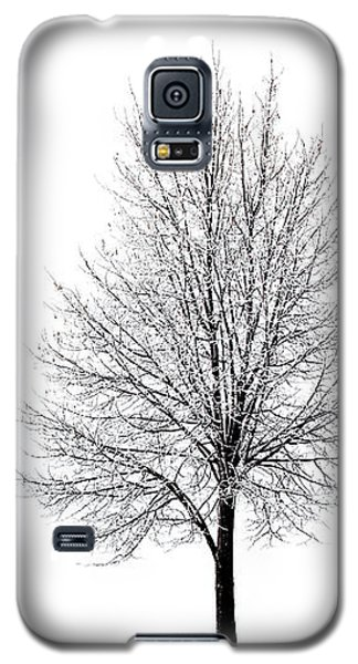 She Said She'd Come Galaxy S5 Case by Yvette Van Teeffelen
