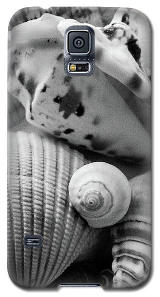 She Sells Seashells Galaxy S5 Case