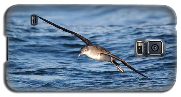 Galaxy S5 Case featuring the photograph Shearwater by Richard Patmore