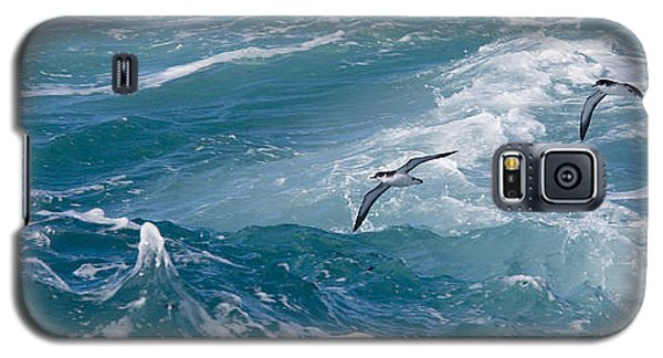 Shearwaters Galaxy S5 Case
