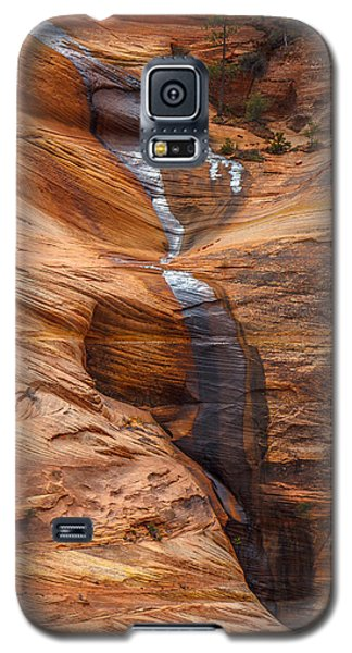 Sheen Galaxy S5 Case