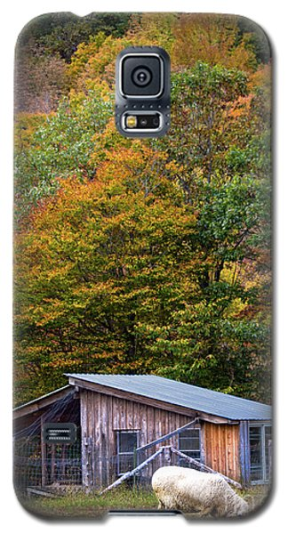 Galaxy S5 Case featuring the photograph Sheep And Foliage, Bethel, Maine #40206 by John Bald