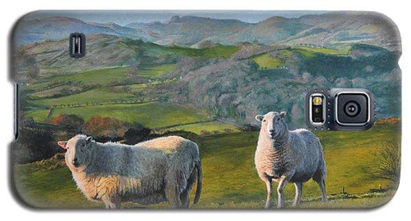 Sheep At Rhug Galaxy S5 Case